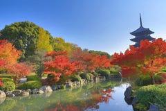 对籍塔在京都,在秋季期间的日本 库存照片