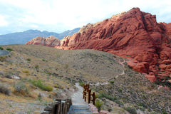 对红色岩石的一串sesert足迹 免版税图库摄影