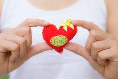 对红色负的妇女心形在情人节 免版税库存照片