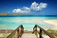 对绿松石水的楼梯和白色沙子使盐水湖靠岸 免版税库存照片