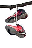 对老和半新训练穿上鞋子垂悬在树 免版税图库摄影