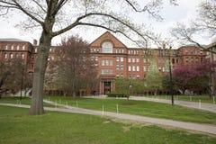 对自然历史的剑桥, MA,美国哈佛博物馆的入口  库存照片