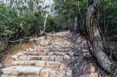 对葡萄酒杯海湾监视,塔斯马尼亚岛的石台阶 库存图片