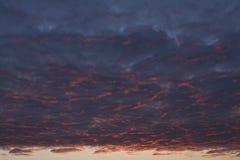 对蓝色云彩的桃红色 库存照片