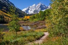 对褐红的响铃的足迹在秋天 库存图片