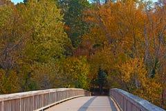 对西奥多・罗斯福海岛公园的一座桥梁有在秋天叶子在华盛顿特区,美国的树的 免版税库存图片
