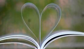 对读书爱  库存照片