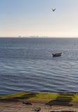 对谷物小岛的视图  免版税库存图片