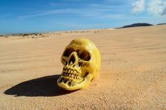对象在干燥沙漠 免版税库存照片
