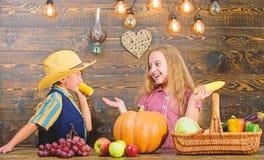 对负负责对每日农厂差事 孩子农夫女孩男孩菜收获家庭农场 当前农场的孩子 免版税库存图片