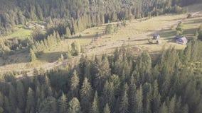 对近夏天喀尔巴阡山脉的森林和山的鸟瞰图由Dzembronya村庄 影视素材