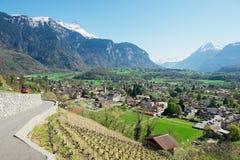 对镇Bex (小行政区沃州)的看法在Bex,瑞士 免版税库存照片