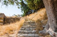 对阿波罗寺庙废墟的台阶在罗得岛 库存图片