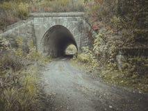 对隧道的入口 桥梁 库存照片