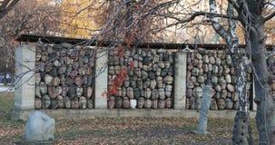 对雕刻家叶夫根尼丘巴罗夫的斯大林主义抑制的受害者的纪念碑和对斯大林的一座纪念碑 影视素材
