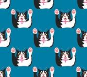 对靛蓝色背景的逗人喜爱的黑白猫攻击 也corel凹道例证向量 库存例证