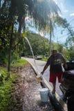 对飓风玛丽亚的残骸 库存照片