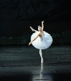 对飞行芭蕾天鹅湖的天鹅翼 库存图片