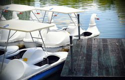 对鸭子样式的小船 库存图片