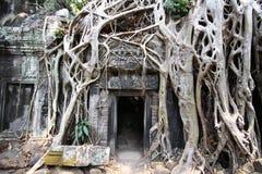 对吴哥城寺庙的入口 免版税图库摄影
