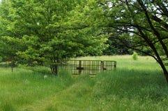 对绿色草甸的门 图库摄影
