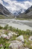 对Beluha山的看法从Akkem谷在夏日,阿尔泰,俄罗斯 免版税库存照片