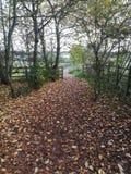对Brixworth国家公园的路在秋天 库存照片