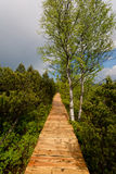 对Chalupska板条的木步行 库存图片