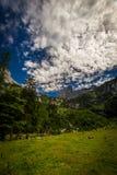 对Dachstein的风景看法从与剧烈的天空蔚蓝和绿色森林的Hinterer Gosausee 库存照片