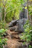 对Khao党观点,山姆Roi Yod国家公园, Phra Chaup Khi Ri Khun省的步方式在泰国的中部 库存图片