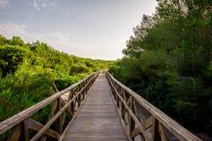 对Playa de穆罗角海滩的一座木板走道桥梁能Picafort,马略卡 图库摄影