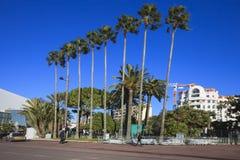 对Promenade de la Croisette,戛纳,法国的看法 库存图片
