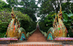 对Wat Phrathat土井素贴的龙台阶 库存照片