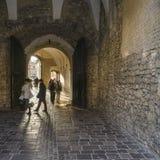 对Wawel庭院的入口 免版税库存图片