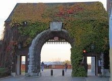 对Wawel皇家城堡的入口在克拉科夫,波兰 免版税库存照片