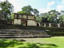 对Xunantunich考古学储备废墟的看法在伯利兹 免版税库存照片