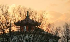 寺庙上面在京都 库存照片