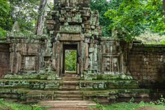 寺庙在柬埔寨密林 免版税库存图片