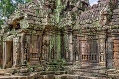 寺庙在柬埔寨密林 库存照片