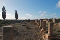 寺庙在Lixus,拉腊什 免版税库存照片