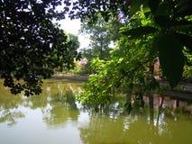 寺庙场面在一个池塘的银行中通过树窥视  免版税库存照片