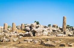 寺庙废墟在Selinunte,西西里岛 免版税库存图片