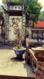 寺庙庭院在香水塔,河内,越南的 免版税图库摄影