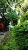 寺庙泰国沈默 库存照片