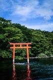 寺庙的老和不可思议的日本门 库存照片