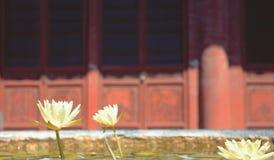 寺庙的莲花 库存图片