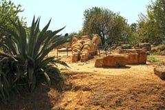 寺庙的谷在西西里岛,意大利 免版税库存图片
