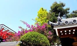 寺庙细节,冲绳岛日本 库存照片