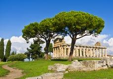 寺庙蜡膜, Paestum意大利 免版税库存照片