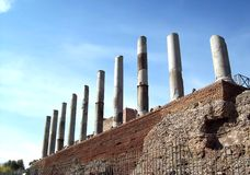 寺庙金星 免版税库存图片